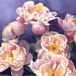 Pink Peonies Original Watercolor by Shirley Lehner-Rhoades