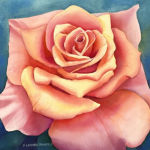 Coral Rose Original Watercolor by Shirley Lehner-Rhoades