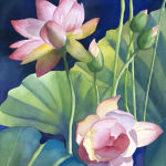 Lotus Blooms. Original Watercolor by Shirley Lehner-Rhoades