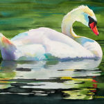 Mute Swan - Original Watercolor Painting by Shirley Lehner-Rhoades.